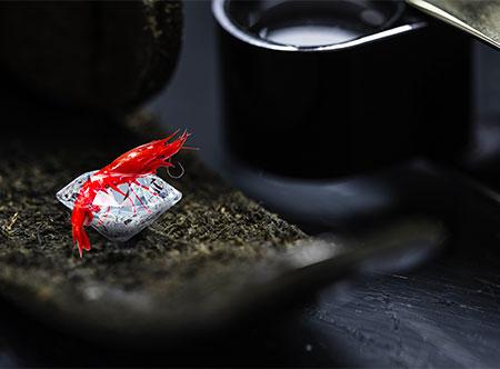 So Premyum - Diamant brut crevette